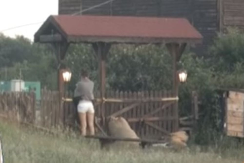 (VIDEO) CECA HTELA DA PRESKOČI OGRADU: Plakala i dozivala Zadrugu da je puste...