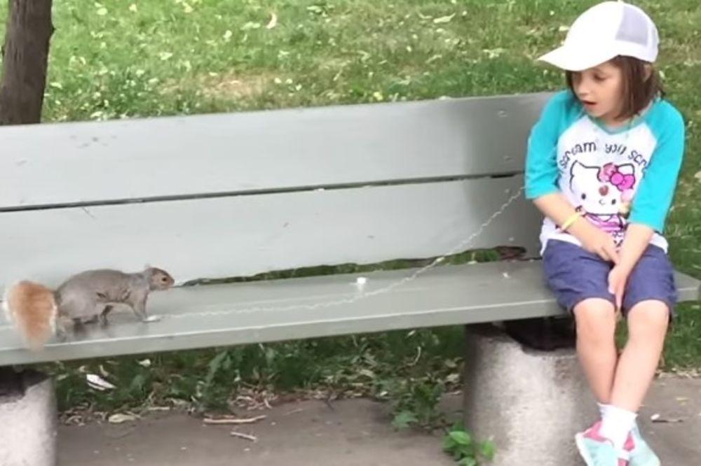 (VIDEO) KAKO DA DETETU IZVADITE ZUB? Treba vam samo konac, musli i veverica!