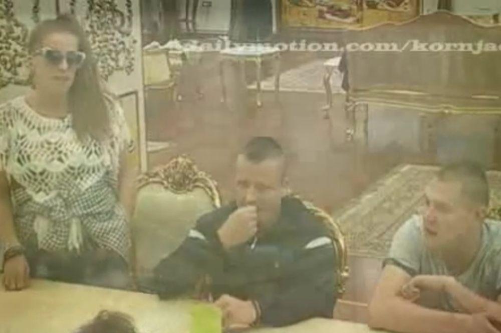 (VIDEO) VILOM SE ŠIRI ZARAZA: Parovi u panici, traže hitno doktora