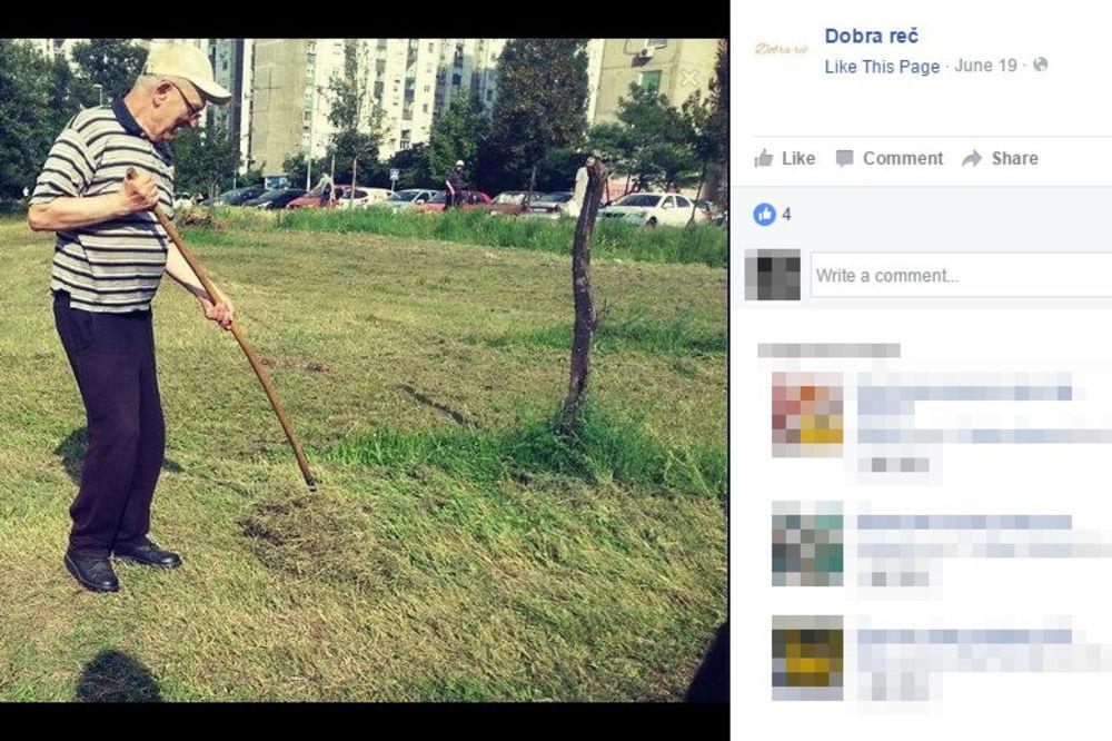 AKO NISTE UPOZNALI OVOG DEKU CARA, VREME JE! On je posadio voćnjak koji svi u Beogradu mogu da beru