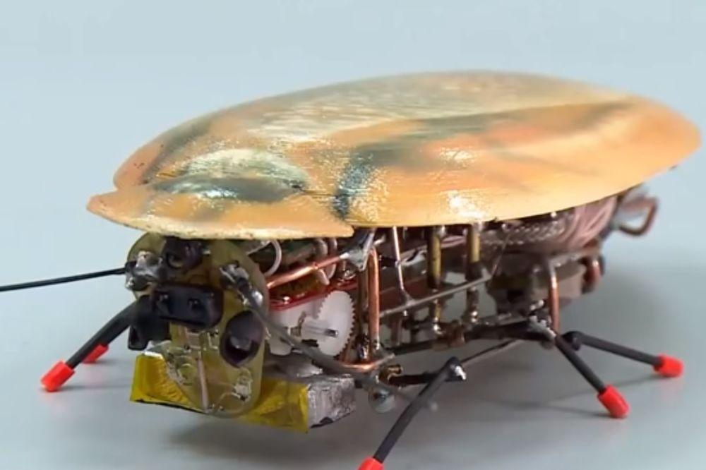 (VIDEO) BUBAŠVABE ŠPIJUNI: Rusi razvili insektolikog robota, sposobnog za rešavanje vojnih zadataka