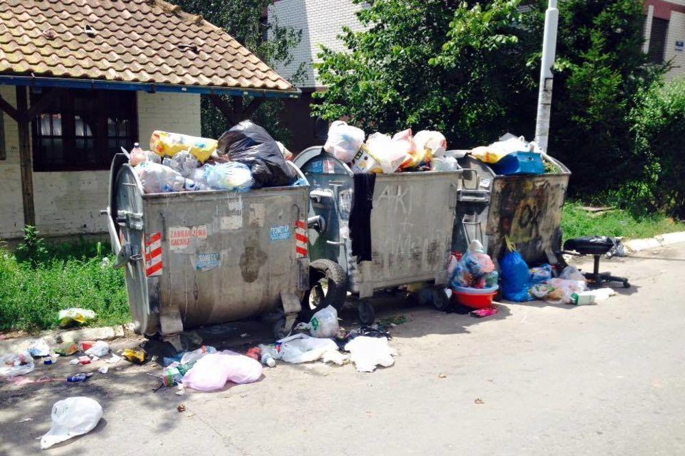 (FOTO) RESNIK PLIVA U ĐUBRETU Građani očajni: Kao da živimo na deponiji!