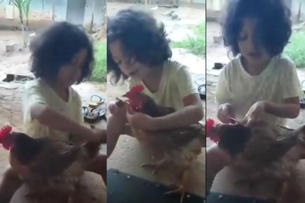 (VIDEO) NERAZDVOJNE DRUGARICE: Češlja je i šminka, a ona se ponaša kao prava kokoška