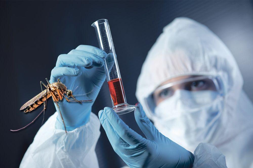 ČITAJTE U KURIRU SRBIJOM HARA ZARAZA: Virus zapadnog Nila već ubio 47 ljudi!
