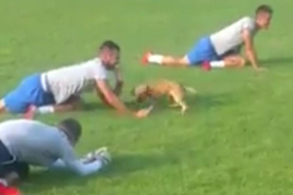 (VIDEO) FUDBAL NA SEOSKI NAČIN: Igrači nisu mogli da treniraju, razlog će vas nasmejati