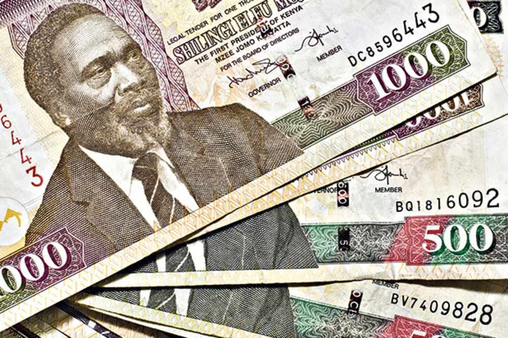 Evropski zajmodavci pokreću kompaniju za ulaganja u Africi