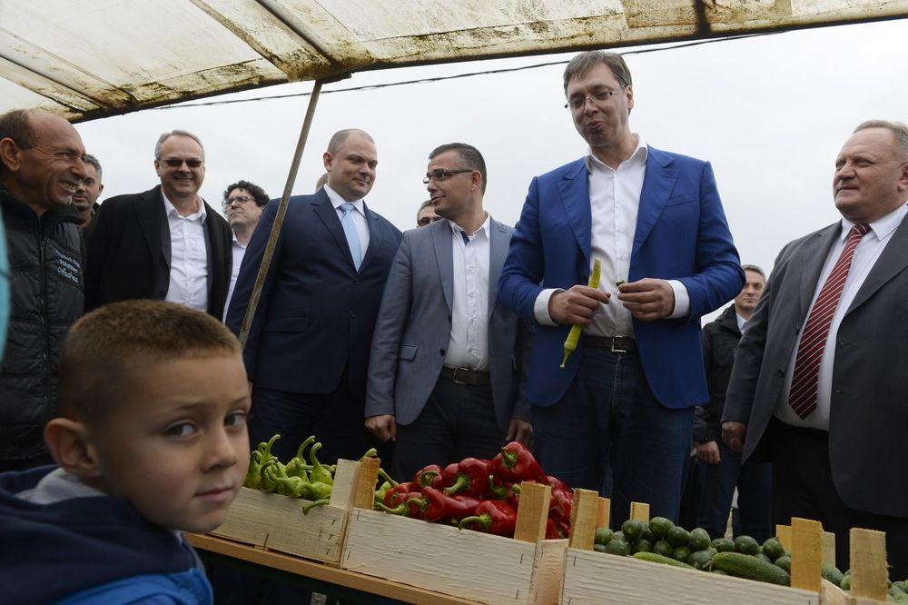 Foto: Tanjug/Tanja Valič