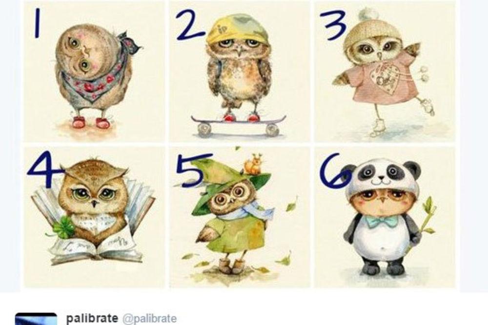 SAMOSPOZNAJA: Odaberite sovu koja vam je najsimpatičnija i saznajte kakav ste karakter