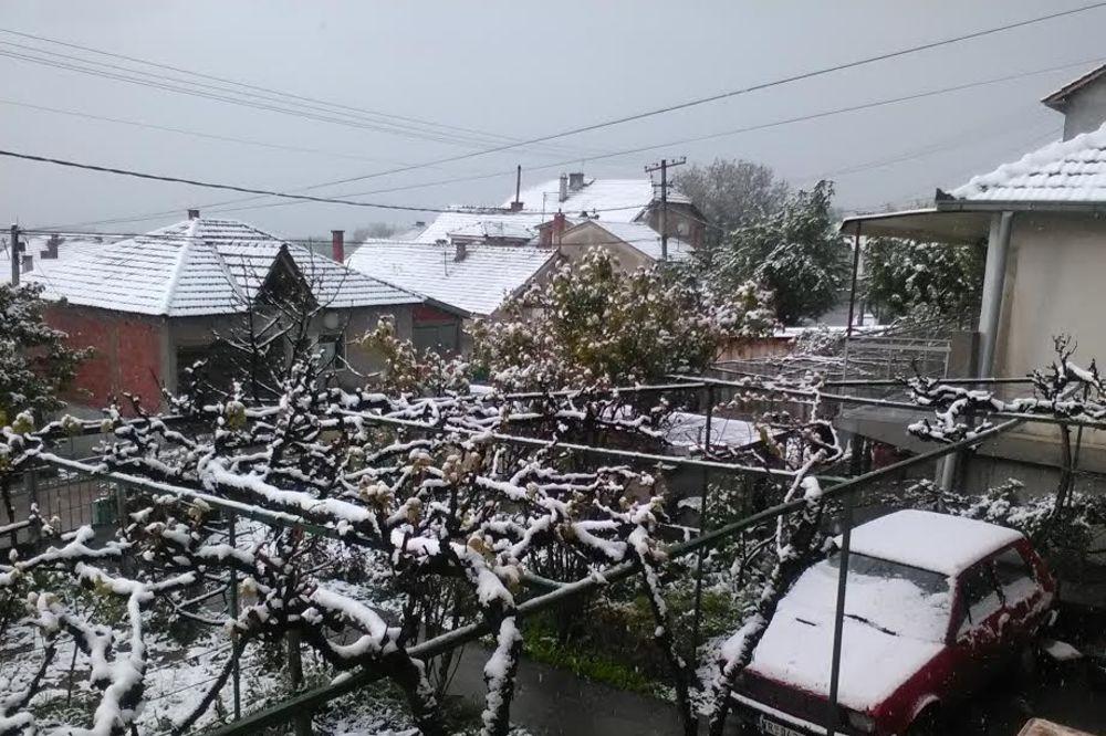 (FOTO) I VRANJE SE ZABELELO: Jug Srbije osvanuo pod snegom