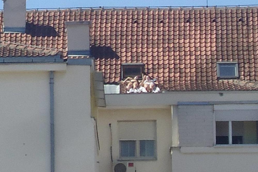 (FOTO) ONO KAD NABACUJEŠ BOJU: Novosadske cicamace sunčaju se na krovu, komšiluk na nogama!