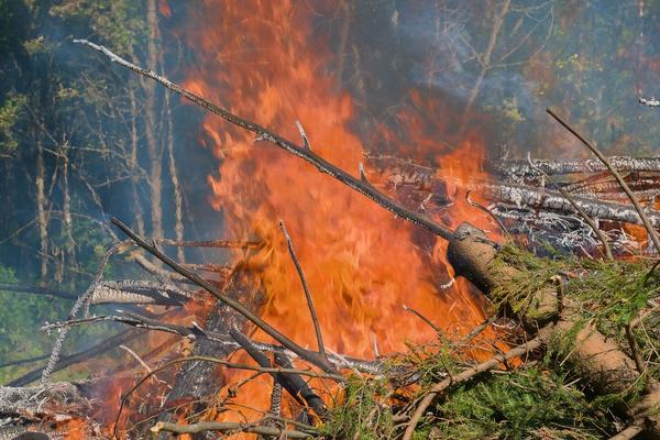 GORI I KOD ZAGREBA: Izbio šumski požar na području punom municije, čuju se eksplozije, jedan vatrogasac povređen