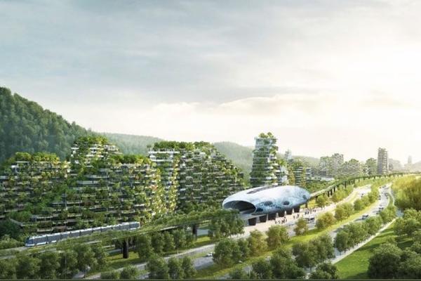 POSADILI METROPOLIS – U Kini niče prvi šumski grad na svetu!?