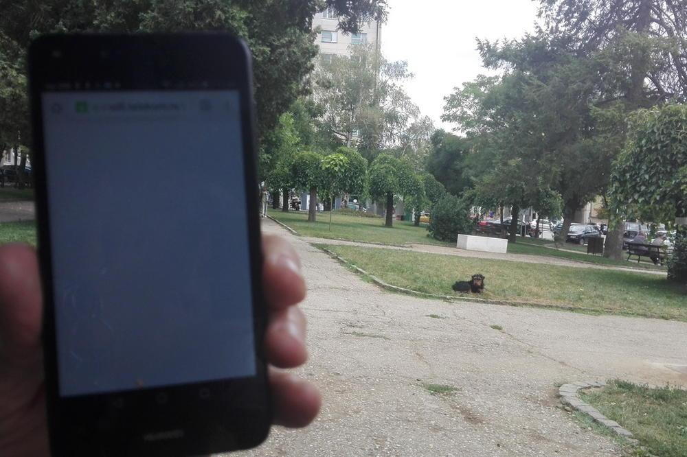 (FOTO) CENTAR PROKUPLJA OSTAJE BEZ MREŽE: Internet drvo ipak ne radi!