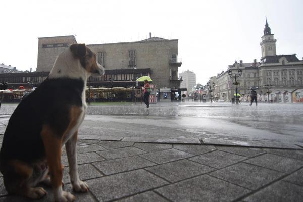 JESEN STIŽE NA VELIKA VRATA: Subota u Srbiji tmurna, hladna