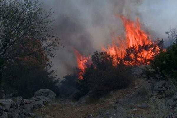 BUKTE POŽARI U TOPLICI: Vatrogasci se bore sa stihijom, vetar