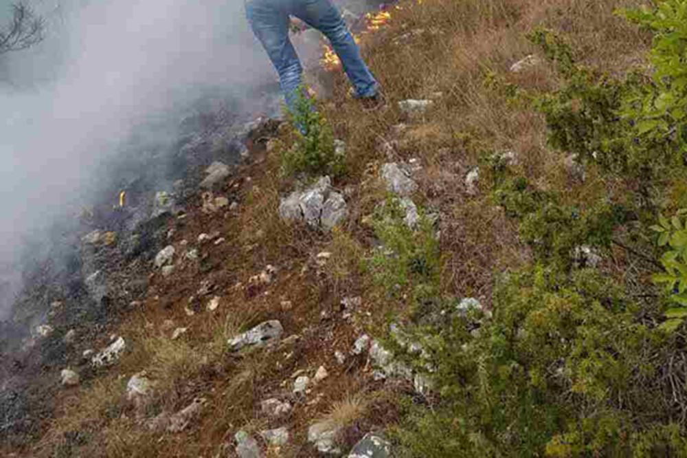 VELIKI POŽAR BLIZU NOVE VAROŠI: Gori 20 hektara šume i trave, vatrogasci, vojska i meštani brane kuće