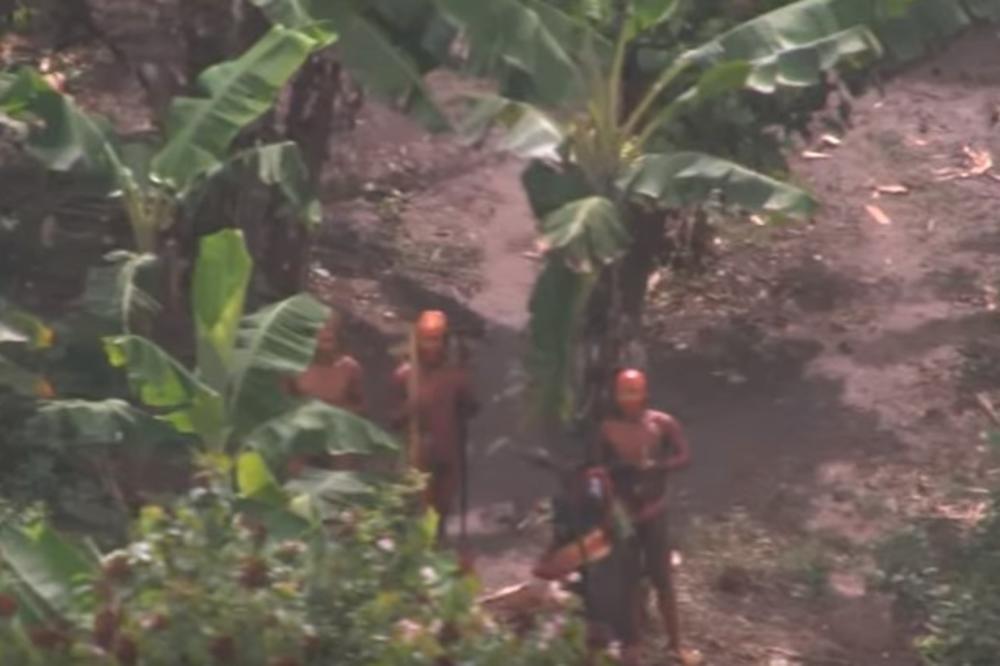 MASAKR U AMAZONU: Pobili pleme koje se skrivalo od sveta vekovima