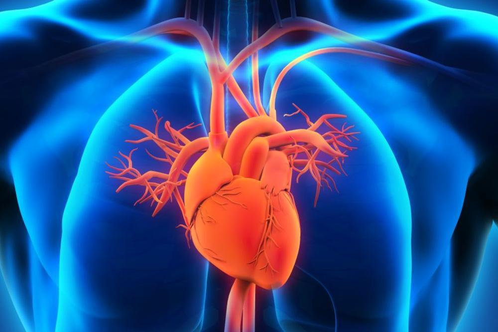 OVO LEKOVITO VOĆE SNIŽAVA KRVNI PRITISAK: Evo kako na prirodan način sprečiti srčani i moždani udar