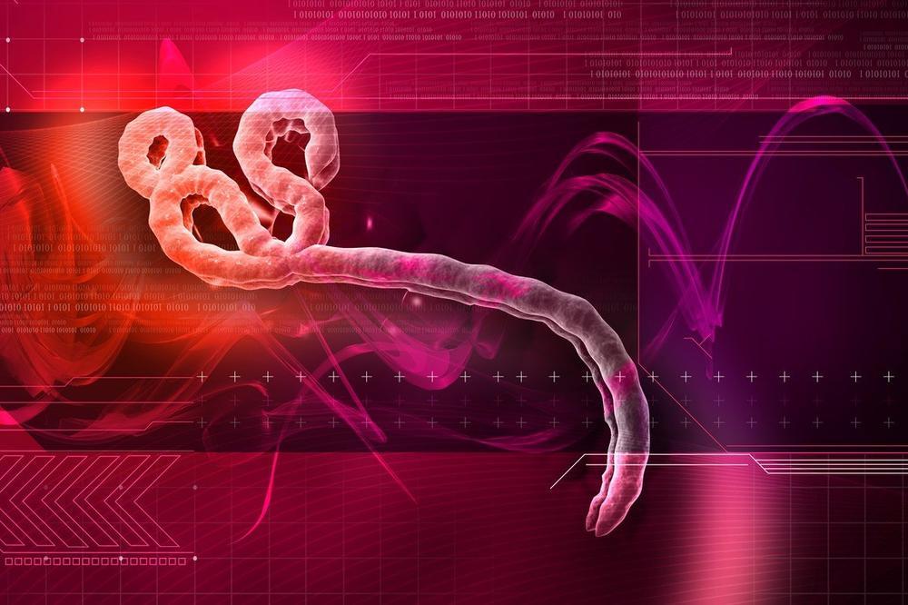 JEZIVO PRIZNANJE AMERIČKIH STRUČNJAKA: Virusi ubice u našim laboratorijama nisu bezbedni i mogu da procure!