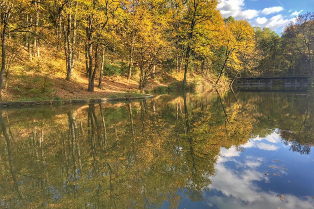 (KURIR TV, FOTO) RAJ U SRBIJI: Nalazi se samo 30 kilometara od Beograda, a krije neverovatnu prirodu!