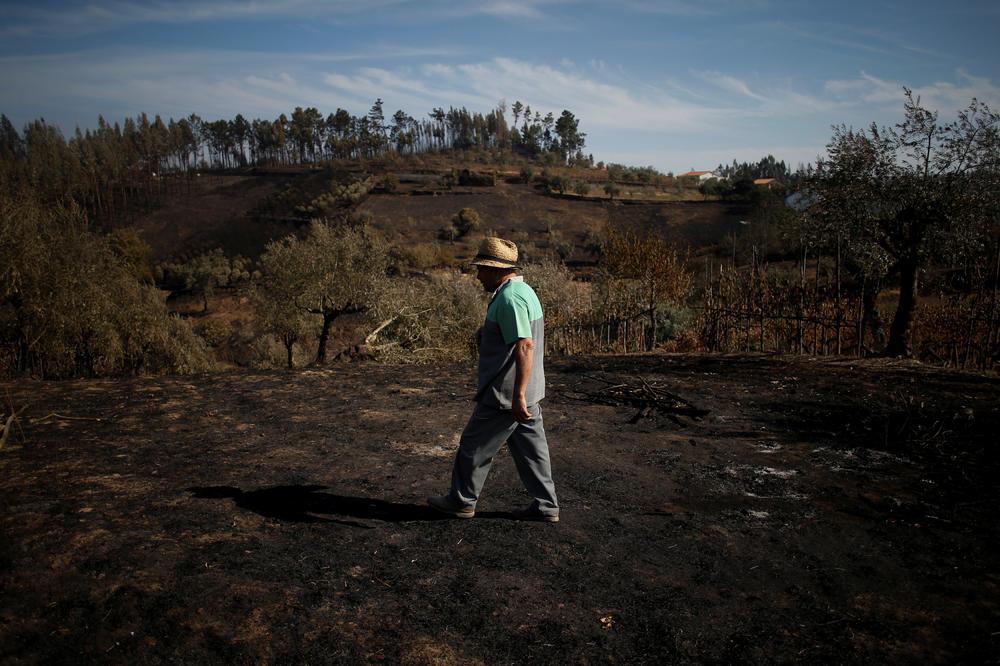 CRNI ISTORIJSKI REKORD: Požari u Portugalu uništili 442.000 hektara vegetacije