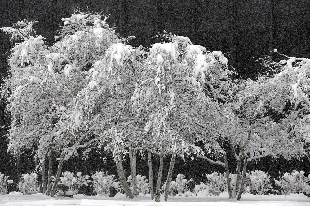 STIŽE SNEG U SRBIJU, VEĆ SE ZABELELO NA ISTOKU ZEMLJE: Najviša dnevna temperatura neće preći 3 stepena!