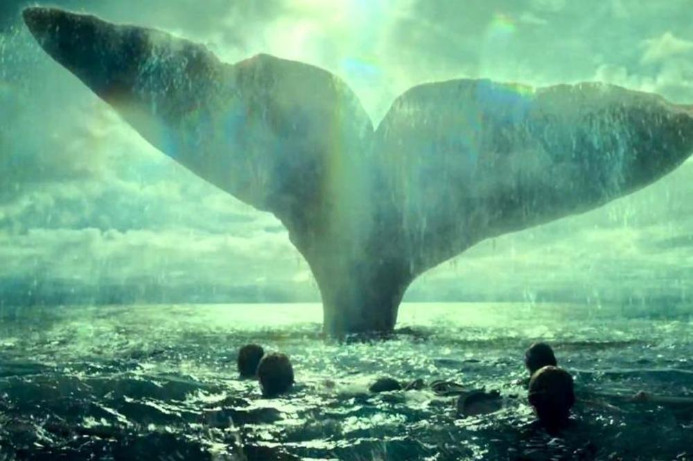 (VIDEO) ISTINITA PRIČA O MOBI DIKU: Kada je kit uništio brod, mesecima su lutali morem, a na kraju su i jeli jedni druge
