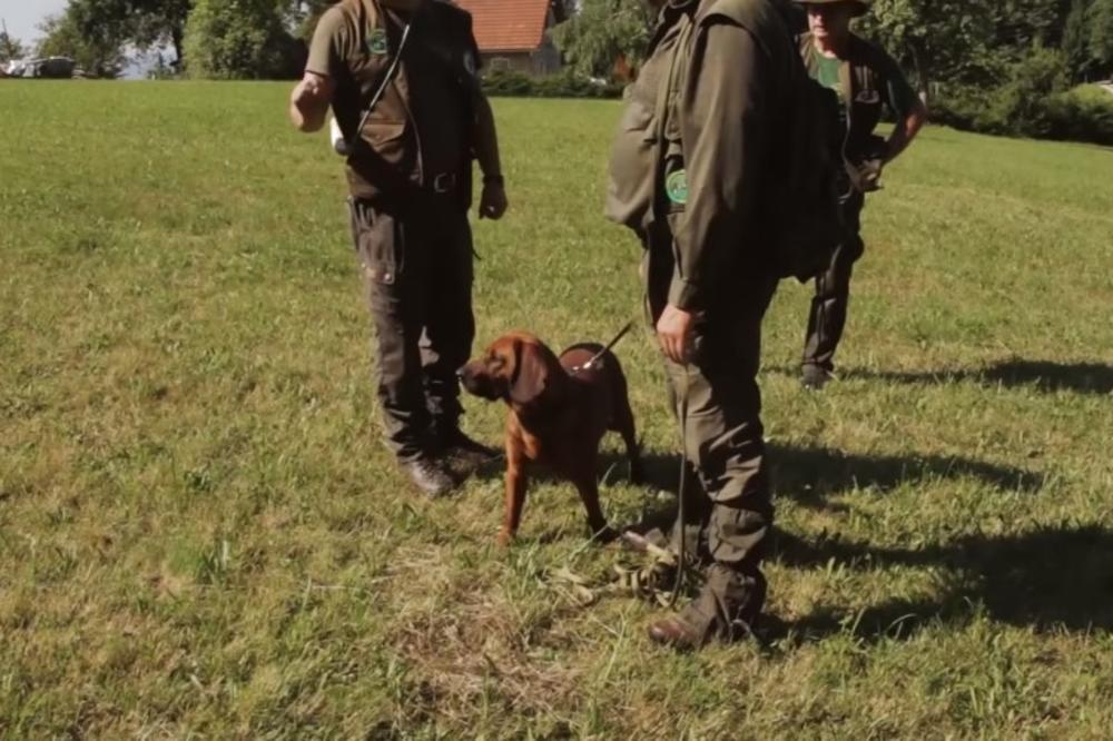 POSTAVIO GPS NA PSA DA GA NE UKRADU: Lovcu iz Veliševca nestalo 6 ljubimaca, a onda je saznao surovu istinu