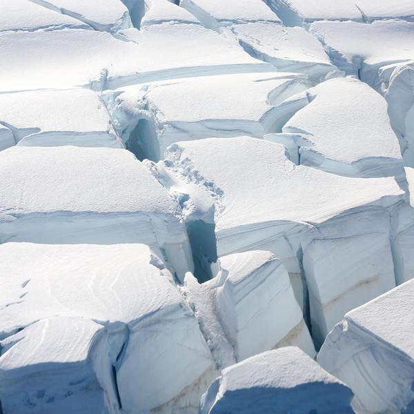 Ostavljeni na antarktiku online dating