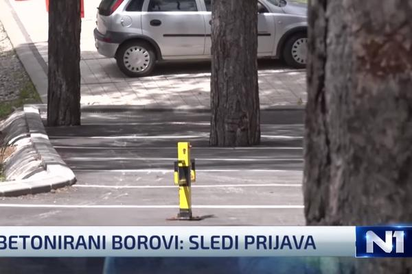 NEVERICA NA ZLATIBORU: Zabetonirao 4 bora da napravi parking