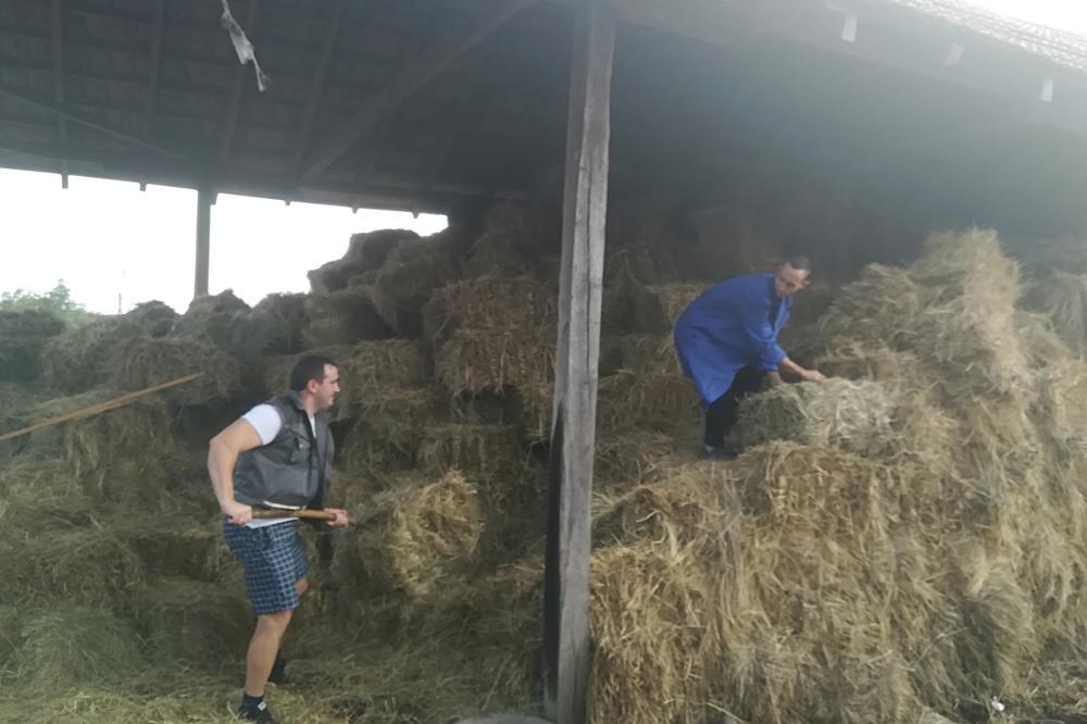 RADNO VREME MU JE I PO 14 SATI, ALI MU TO NE SMETA: Stefanu (26) iz sela Banje kod Aranđelovca farma je druga kuća, a evo šta kaže o zaradi!
