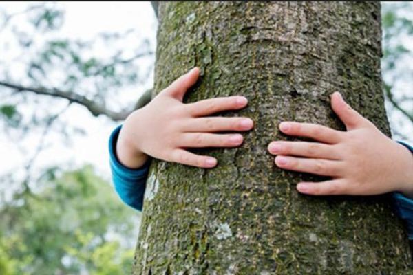 SKOPSKI VATROGASCI SKIDALI DECAKA SA DRVETA: Drugovi ga popeli na stablo visoko 3,5 metara i otisli!