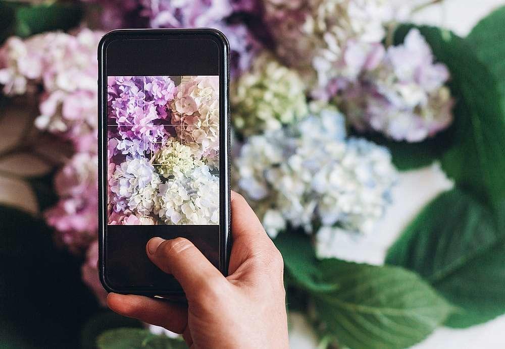 19:46h OD SADA MOŽETE BITI SIGURNI DA NEMA FOTOŠOPA: Aplikacija koja jednim klikom pokazuje da li je fotografija autentična