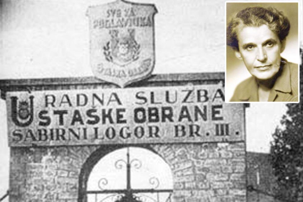 Image result for dijana budisavljevic