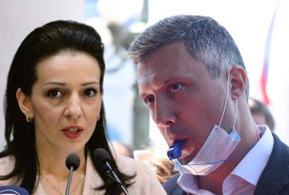 Boško Obradović, Marinka Tepić