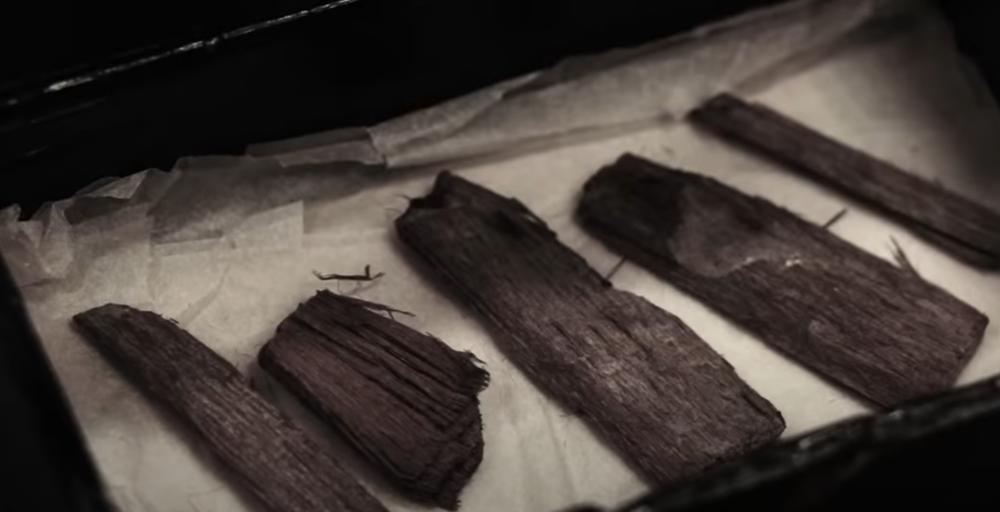 Egipat, drvo, arheolozi