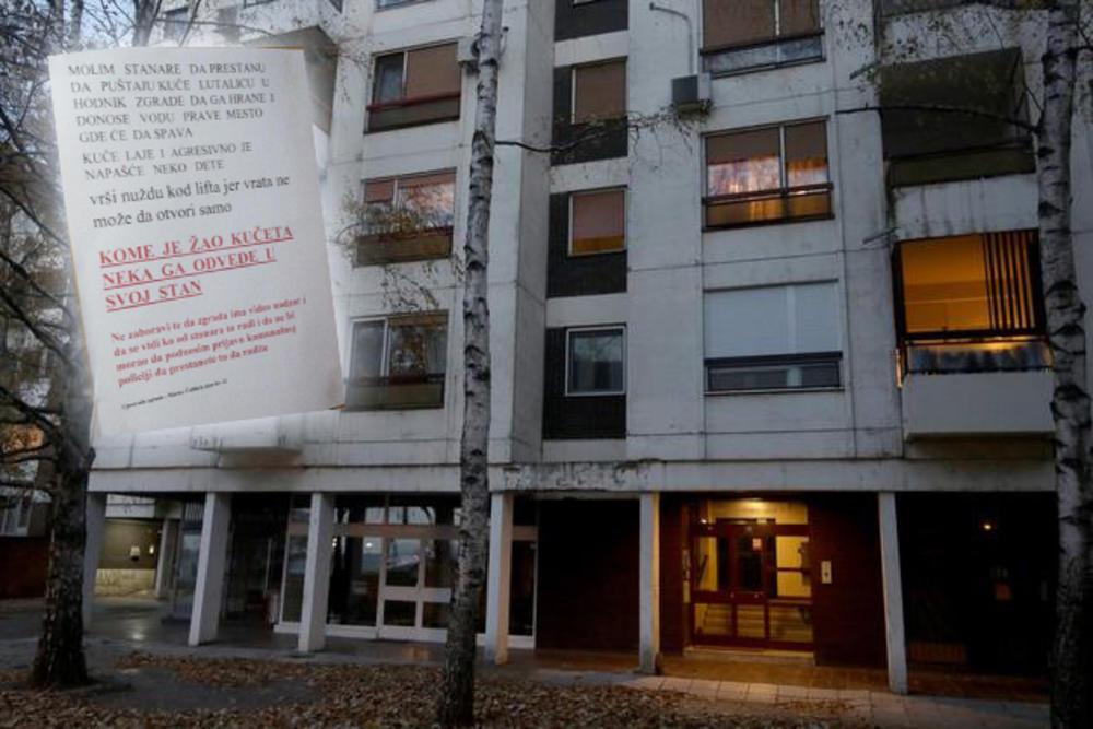 NE PUŠTAJTE LUTALICU, KOME JE ŽAO NEKA GA VODI U STAN Upravnik zgrade u BG jednom porukom razbesneo Srbiju: Vidim ko to radi! FOTO